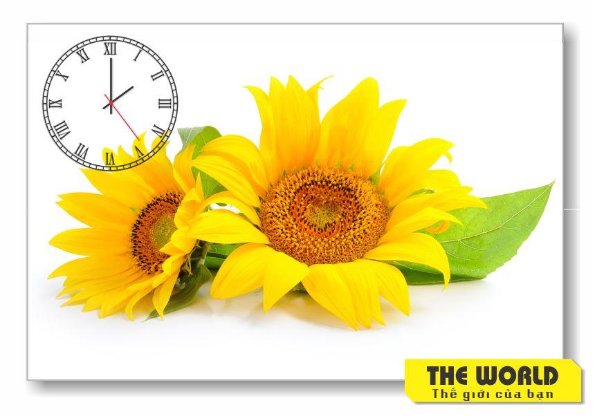 tranh đồng hồ hoa hướng dương đẹp